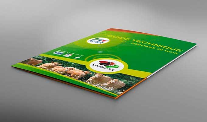 Chemise à Rabat Imprimer Chemise Pochette Personnalisées Sur Mesure - Porte document personnalisé